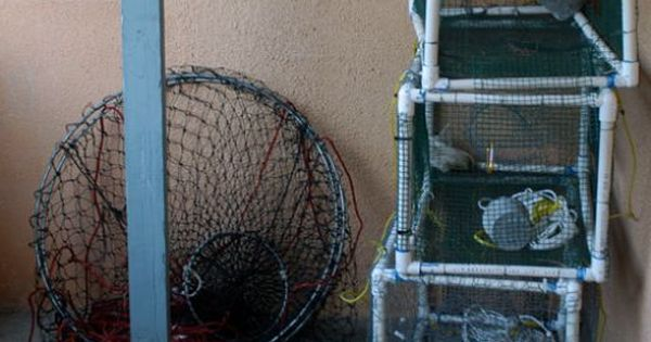 Build Your Own Pvc Crab Lobster Trap Lobster Trap