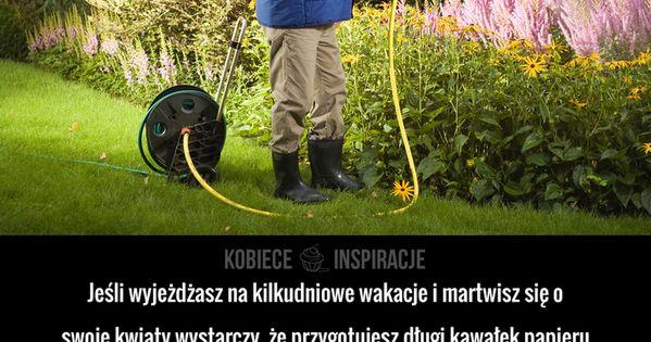 Jak Podlewac Kwiaty Podczas Urlopu Garden