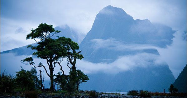New Zealand: 33.5-mile Milford Track through Fiordland National Park. High on my