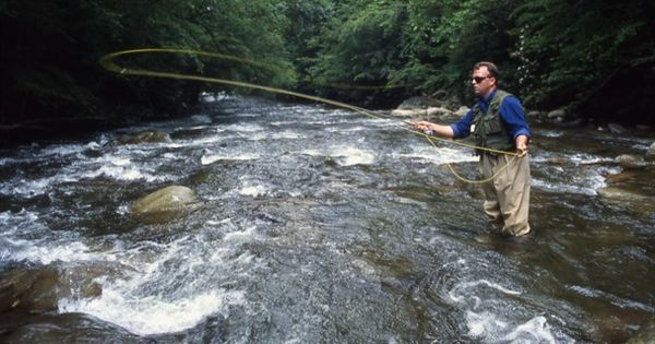 Excellent trout fishing in gatlinburg gatlinburg tn for Fishing in gatlinburg tn
