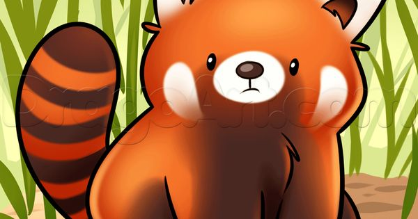 how to draw a red panda how to draw pinterest panda