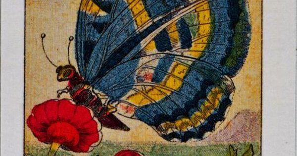 10. La Leggerezza, Sibilla card - Butterfly   Oracles ...