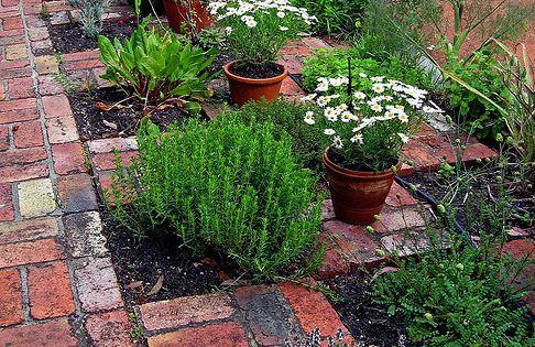 Ideas for a checkerboard herb garden with bricks a fab for Checkerboard garden designs