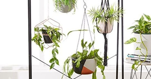 15 Ingenious Indoor Garden Ideas To Steal Apartment