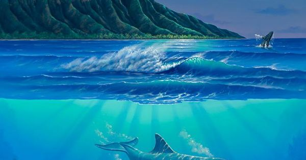 Images for wall murals dolphin wall murals wallpaper for Dolphin paradise wall mural