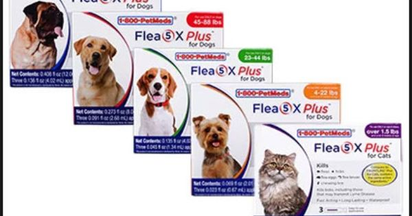 1800petmeds Coupon 25 Off Pet Supplies Save Up To 25 On Quality Pet Supplies From America S Largest P Frontline Plus For Cats Ticks On Dogs Benadryl For Cats