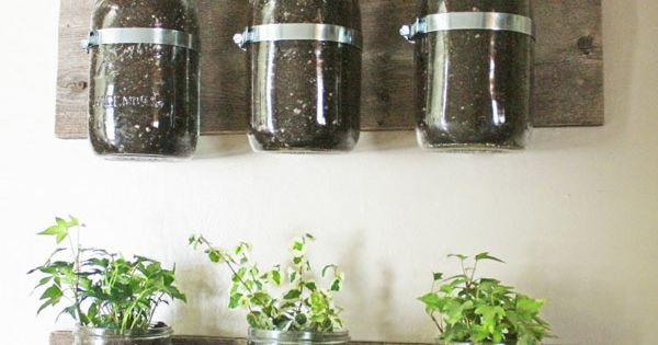 Mason Jar Wall Planters - This amazing idea from Not Just A