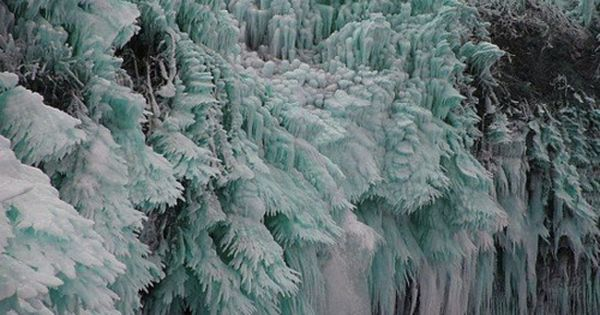 Trees get Frozen by IceStorm!