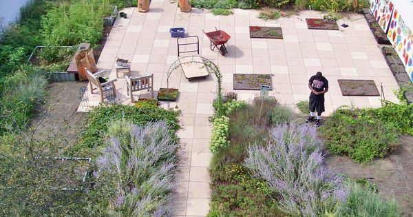 Fresh Small Vegetable Garden Design With Ravishing Rooftop