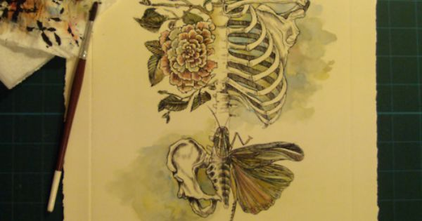 Skeleton / butterfly / plant stuff tattoo idea
