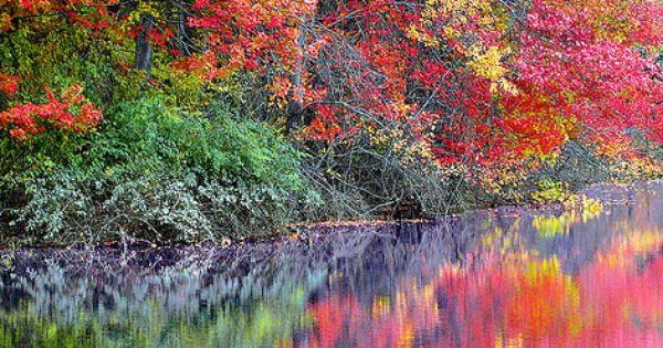 Beautiful colors in nature pic.twitter.com/cIxl68KL6e