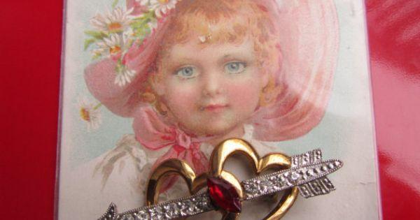 valentine red double primrose