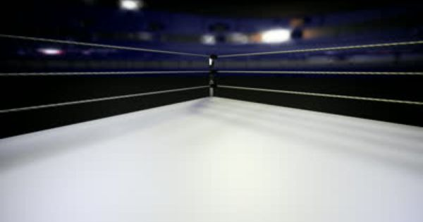 Wrestling Ring Rings Wrestling Ring Boxing Rings