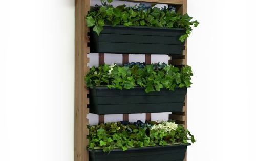 Indoor herb garden ideas living wall planter Indoor living wall herb garden