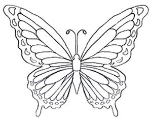 Printable Butterfly Coloring Pages For Kids in 2020 | Butterfly ... | 236x300