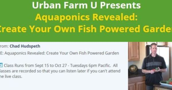 Aquaponics Revealed Create Your Own Fish Powered Garden