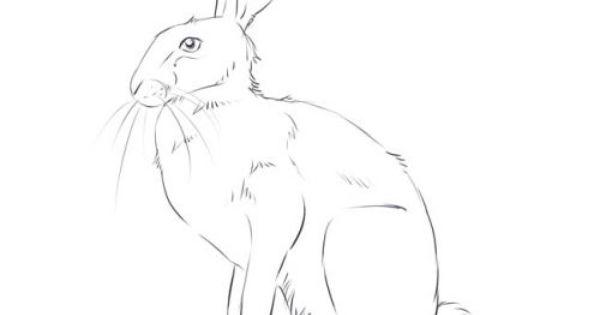 рисунки медведя и зайца