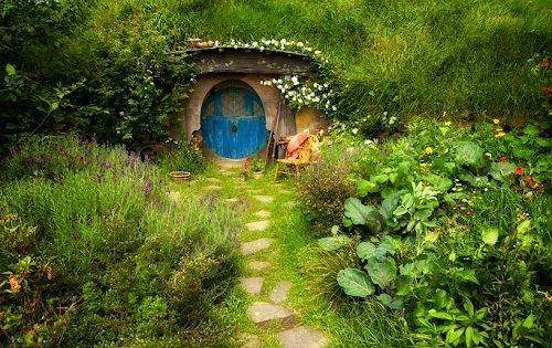 Hobbit House, New Zealand. I so want a hobbit hole of my