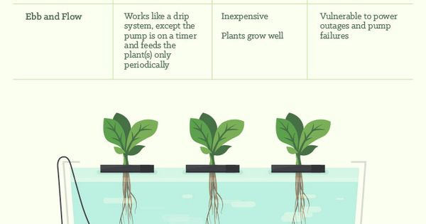 Six different types of hydroponics emergency - Jardineria para principiantes ...