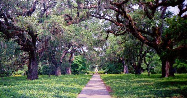 Islands Near Brookgreen Gardens Sc
