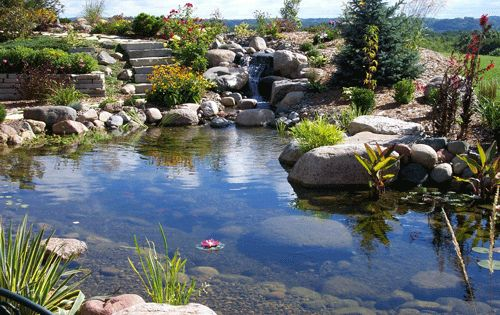 Ecosmarte waterfalls and koi ponds outdoor spaces for Fish pond specialists