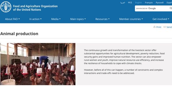 Fao Food And Agriculture Organization Of The United Nations 2014 Animal Production Rome Agricultural Development Human Development Development Programs