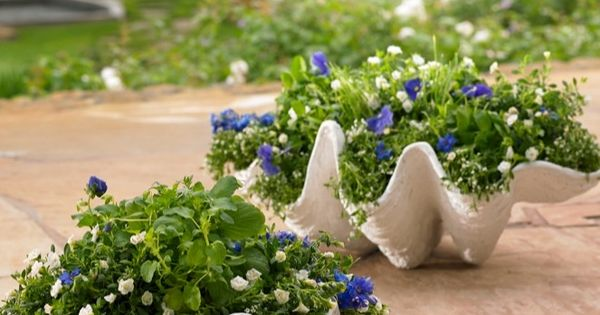Seashell Outdoor Planter Planters Gardens And Beach