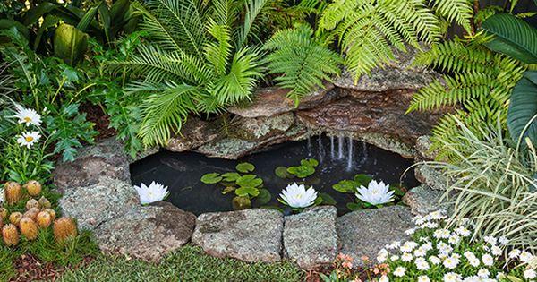 How to make an easy backyard pond for Easy backyard pond