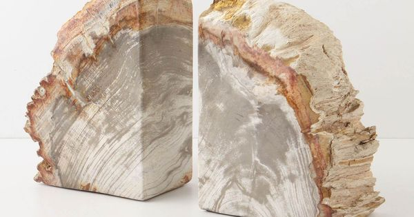 Petrified Wood Bookends $148.00 Hold those design books in style!