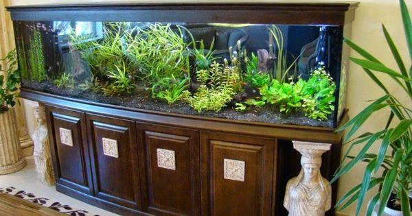 15 id es tonnantes pour vous aider d corer votre chambre avec un aquarium d corez votre. Black Bedroom Furniture Sets. Home Design Ideas