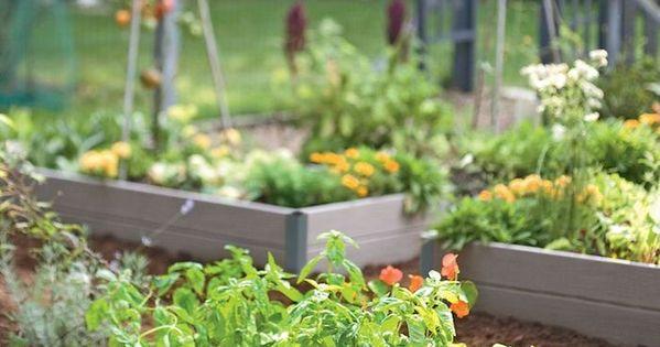 Lovely Hochbeet bef llen ein kleines Hochbeet mit winzigen gr nen Pflanzen Kreative Ideen f r Gartenzubeh r Pinterest