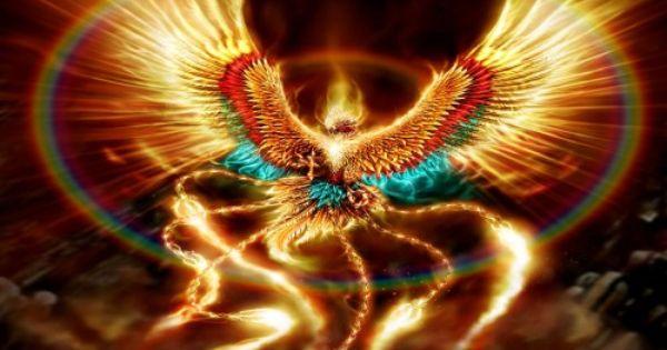 Phoenix Full Hd Search Page 2 Hd Desktop Wallpaper Phoenix Wallpaper Phoenix Bird Phoenix Rising