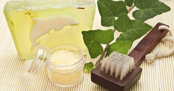 Las mejores plantas para el baño según el Feng Shui  El ...