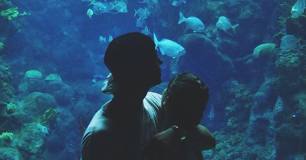 National Aquarium | Date Night - SOLD OUT