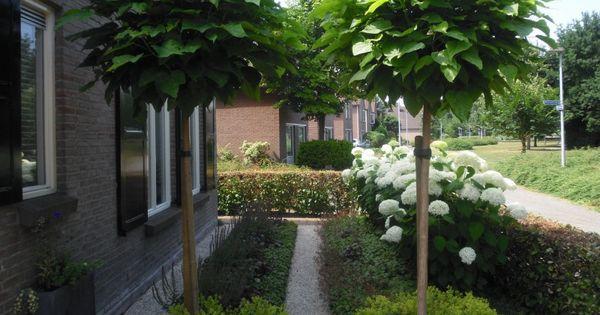 boerderij tuinontwerp - Google Search - Landelijke boerderij tuin ...