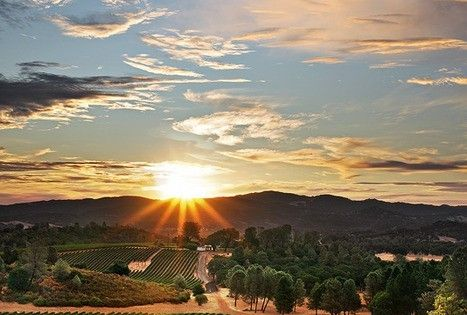 I'd love to do a wine tasting in the vineyards in Northern