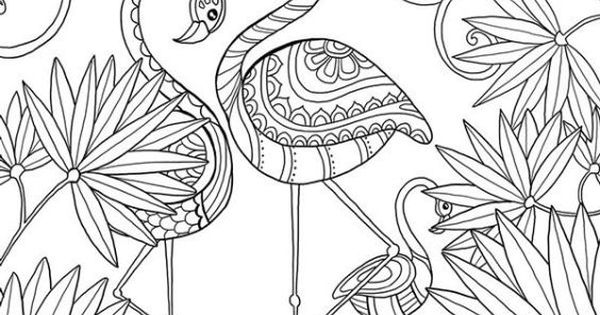 Abstract Bird Coloring Pages : Beautiful doodle art of a flamingo bird coloring page for