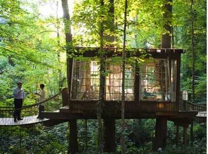 treehouse guesthouse