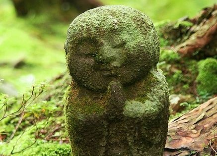 Moss garden, Kyoto, Japan