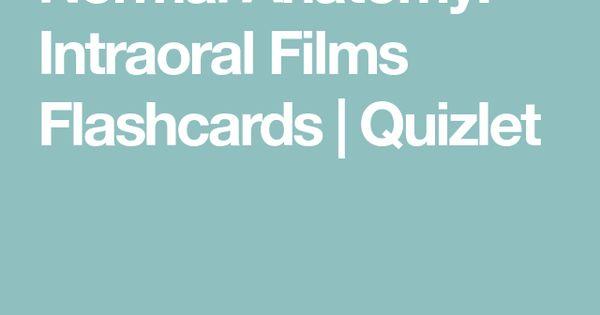 Normal Anatomy Intraoral Films Flashcards Quizlet Intraoral