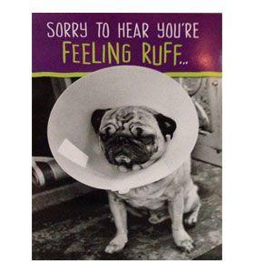 Pug Get Well Soon Card At Www Ilovepugs Co Uk Post Worldwide
