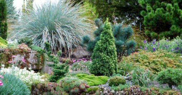 Slightly larger scale plants than a typical fairy garden for Typical landscaping plants