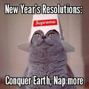 70 Funny New Year S Resolutions That Ll Make You Laugh New Years Resolution Funny Happy New Year Funny Funny New Years Memes