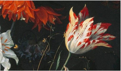Detail From A Still Life Of Tulips And Other Flowers Jacob Marrel 1681 Oil On Canvas Looks Like They Fini Tulip Painting Dutch Still Life Dutch Painters