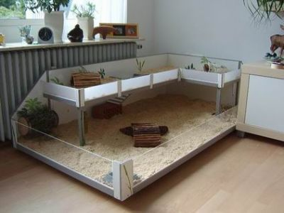 400 300 rabbits. Black Bedroom Furniture Sets. Home Design Ideas