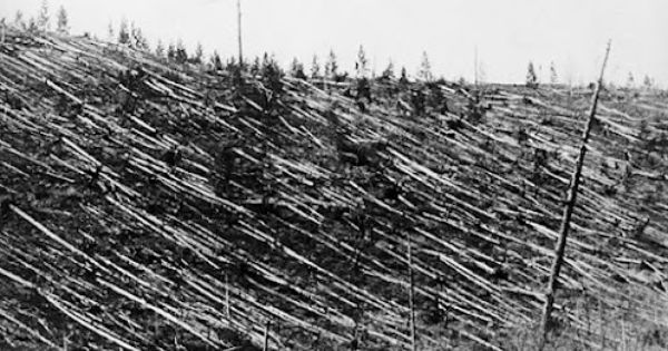 In The 1908 Tunguska Event A Massive Space Rock Hurtled Through