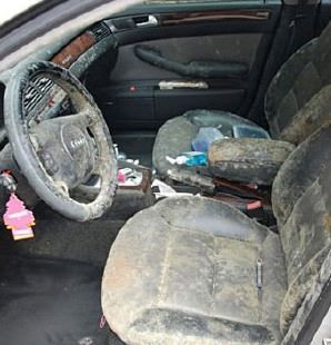 How To Get Mold Out Of Carpet In A Car