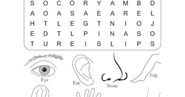 Download Free Word Search Puzzle Body Parts For Kids