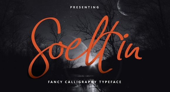 Soeltin is a bouncy imperfect calligraphy typeface crafted from contemporary calligraphy pen