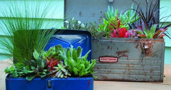 Small space gardens - use an old toolbox!